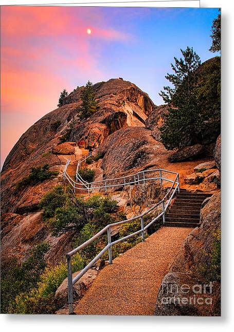 Sequoia Greeting Cards - Moro Rock Path Greeting Card by Inge Johnsson