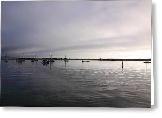 Nine Sisters Greeting Cards - Morro Bay At Evening Greeting Card by Viktor Savchenko