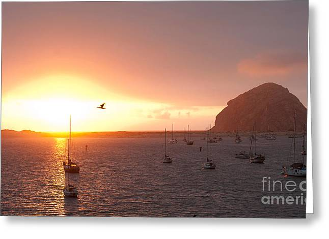 Boats In Morro Bay Photographs Greeting Cards - Morro Bay Rock at Sunset Greeting Card by Artist and Photographer Laura Wrede