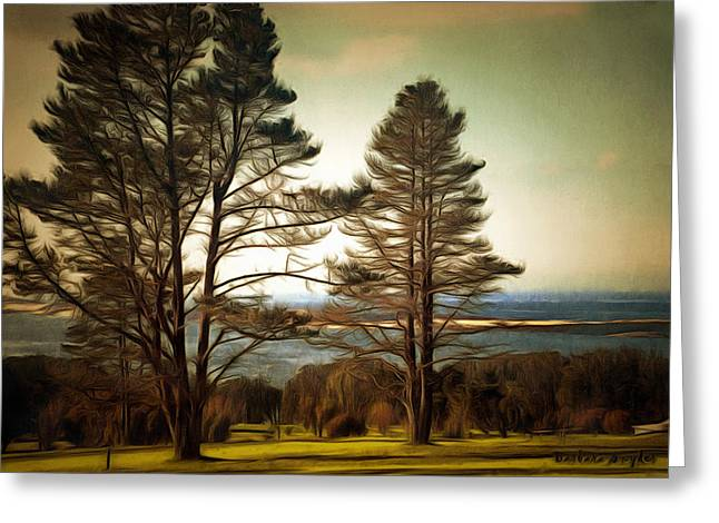 Morro Bay Trees Greeting Card by Barbara Snyder