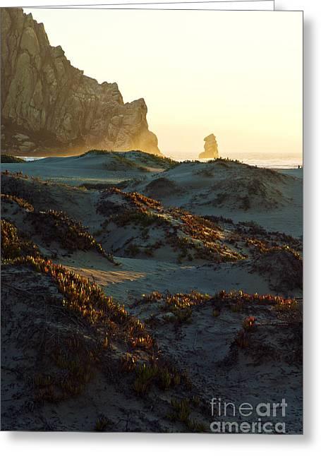 Large Sand Dunes Greeting Cards - Morro Rock at Morro Bay 5 Greeting Card by Micah May