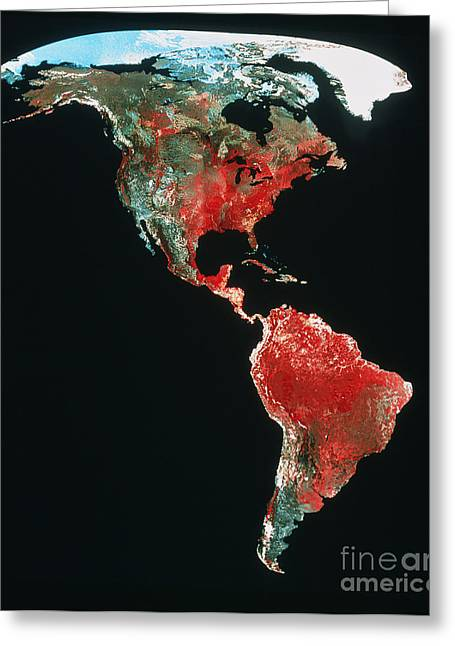 Planet Earth Greeting Cards - Mosaic Of Avhrr  Greeting Card by Earth Satellite Corporation