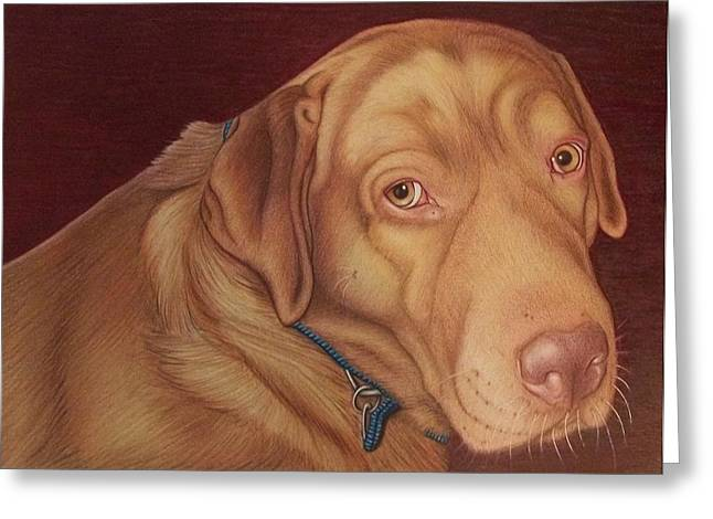 Man's Best Friend Drawings Greeting Cards - Moses   old portrait Greeting Card by Danielle R T Haney