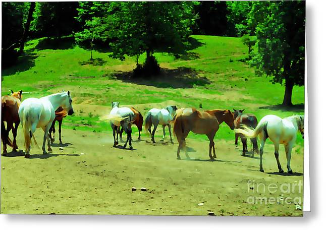 Tennessee Farm Digital Art Greeting Cards - Mosey On Over There Greeting Card by Anita Faye