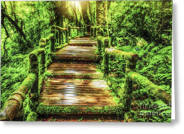 Lighted Pathway Greeting Cards - Moss around the wooden walkway in rain forest  Greeting Card by Anek Suwannaphoom