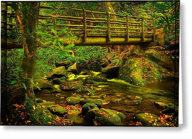 Water Flowing Greeting Cards - Moss Bridge Greeting Card by Mary Young