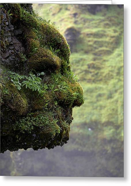Moss-covered Greeting Cards - Moss Covered Rock Shaped Like A Face Greeting Card by Panoramic Images