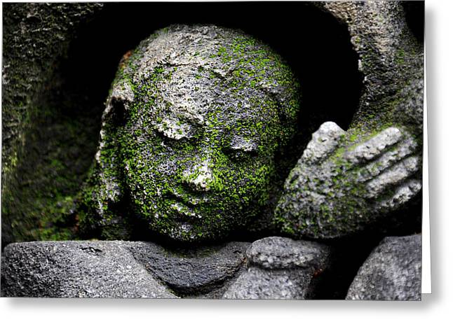 Face Reliefs Greeting Cards - Moss Face Greeting Card by Mark Sullivan