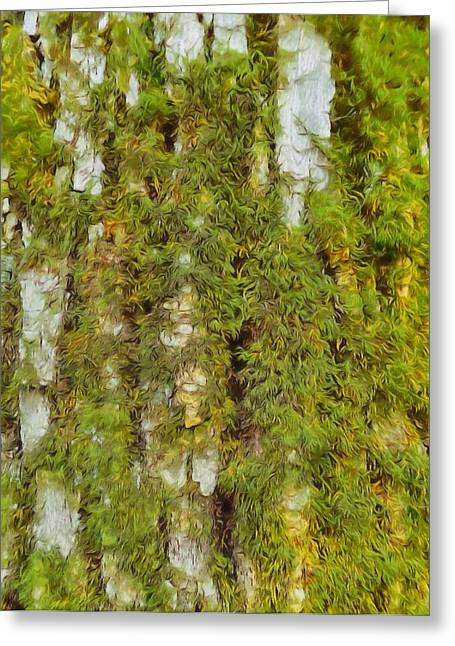 Life On Earth Greeting Cards - Moss On A Tree Greeting Card by Dan Sproul