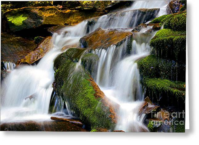 Moss Green Greeting Cards - Mossy Falls Greeting Card by Paul W Faust -  Impressions of Light