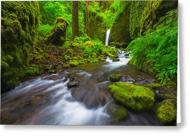 Columbia River Greeting Cards - Mossy Grotto  Greeting Card by Joseph Rossbach