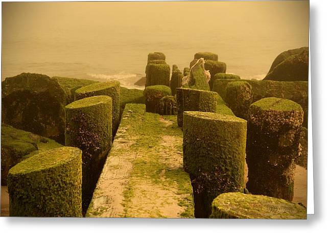 Bay Head Beach Greeting Cards - Mossy Jetty - Jersey Shore Greeting Card by Angie Tirado