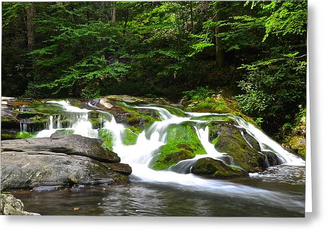 Smoky Greeting Cards - Mossy Mountain Falls Greeting Card by Frozen in Time Fine Art Photography
