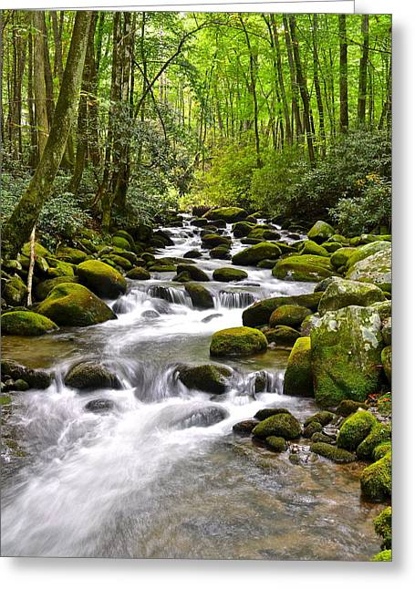 Mundane Greeting Cards - Mossy Mountain Stream Greeting Card by Frozen in Time Fine Art Photography