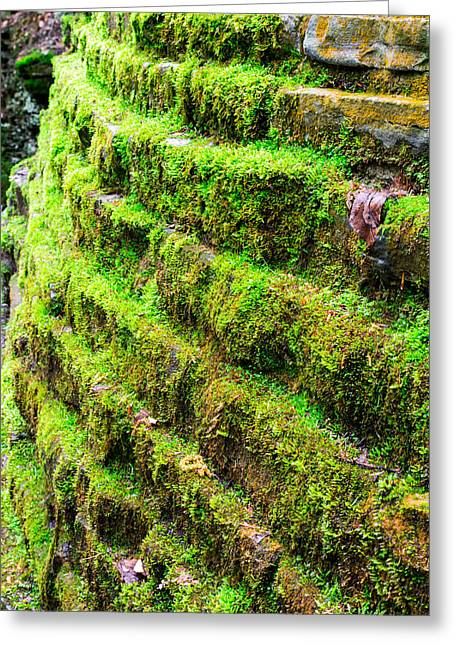 Buttermilk Falls Greeting Cards - Mossy Stone Wall Greeting Card by John Baumgartner