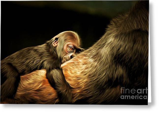 Gorilla Digital Greeting Cards - Mother and Child 20150210brun Greeting Card by Wingsdomain Art and Photography