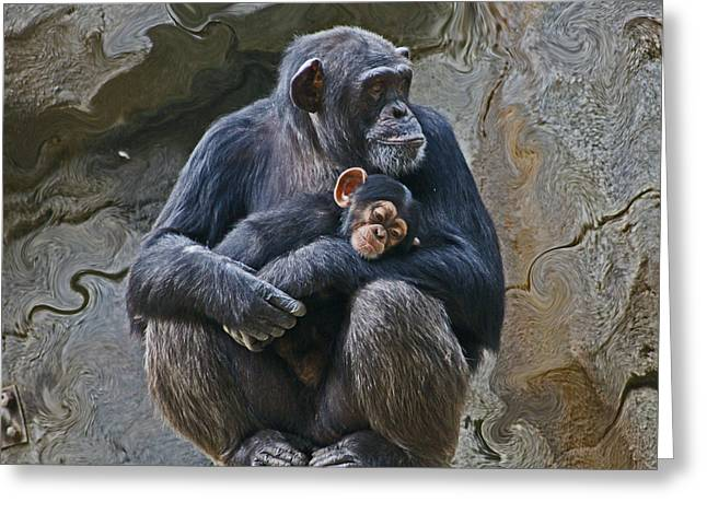 Chimpanzee Digital Greeting Cards - Mother and Child Chimpanzee Greeting Card by Daniele Smith