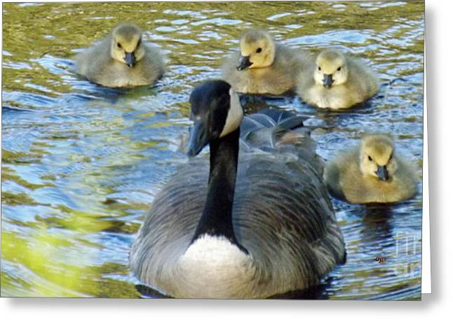 Mother Goose Greeting Cards - Mother Goose and Brood Greeting Card by Brenda Brown