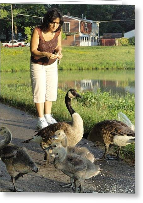 Guy Ricketts Photography Greeting Cards - Mother Goose Greeting Card by Guy Ricketts