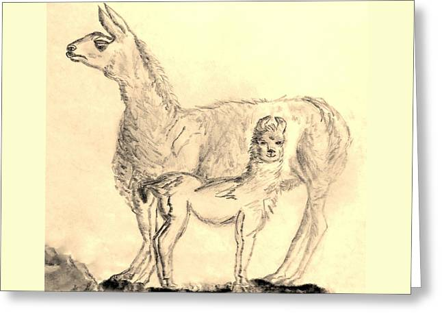 Mom Greeting Cards - Mother Llama and Baby Greeting Card by Eloise Schneider