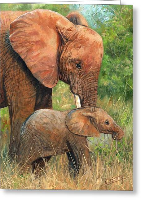 African Elephants Greeting Cards - Mother Love 2 Greeting Card by David Stribbling