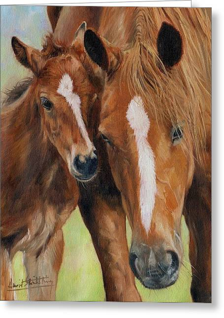 Foal Greeting Cards - Mother Love Greeting Card by David Stribbling