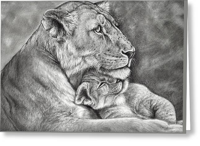 Wild Life Drawings Greeting Cards - Mother Love Greeting Card by Heidi  Kriel