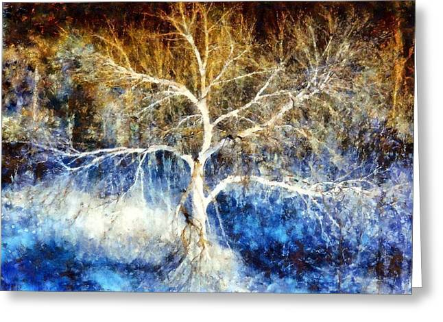 Bare Trees Greeting Cards - Mother Natures Dance Greeting Card by Janine Riley