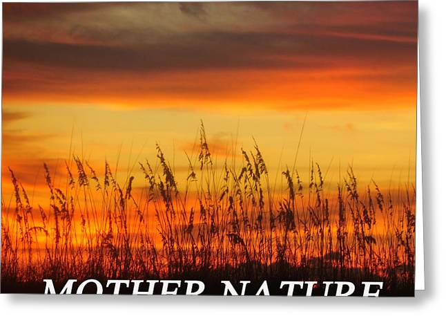 Caring Mother Greeting Cards - Protect Mother Nature Greeting Card by David Lee Thompson