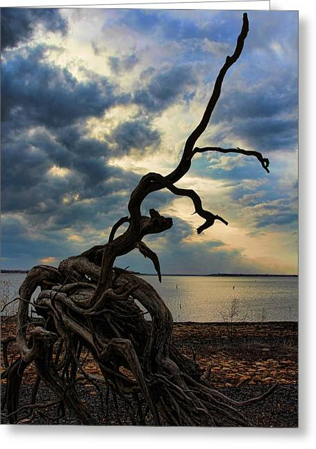 Overturn Greeting Cards - Mother Natures Sculpture Greeting Card by Carolyn Fletcher
