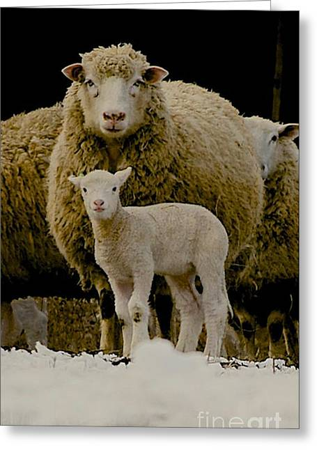 Barn Yard Greeting Cards - Motherhood Greeting Card by Linda Simon