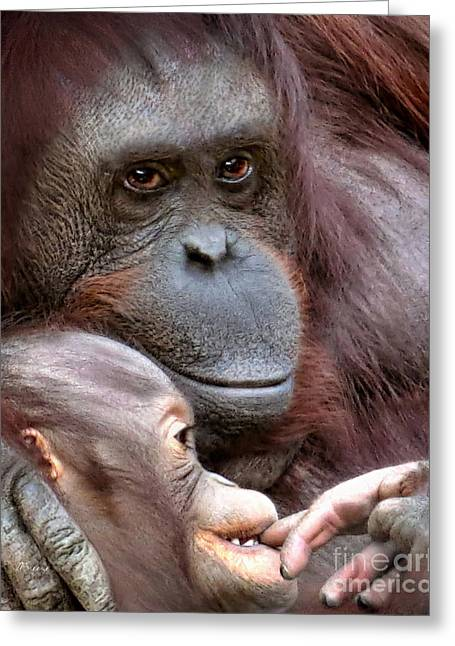 Love The Animal Greeting Cards - Mothers Orangutan Love Greeting Card by Jennie Breeze