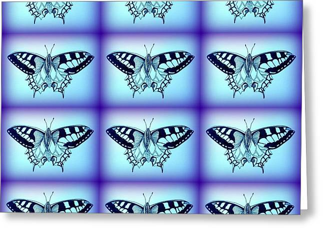 Kitchen Wall Drawings Greeting Cards - Moths Greeting Card by Cathy Jacobs