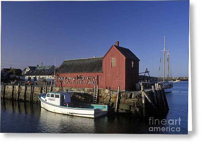 Lobster Shack Greeting Cards - Motif Number 1 - FM000069 Greeting Card by Daniel Dempster