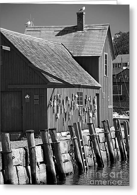 Red Fishing Shack Greeting Cards - Motif Number One BW Black and White Rockport Lobster Shack Maritime Greeting Card by Jon Holiday