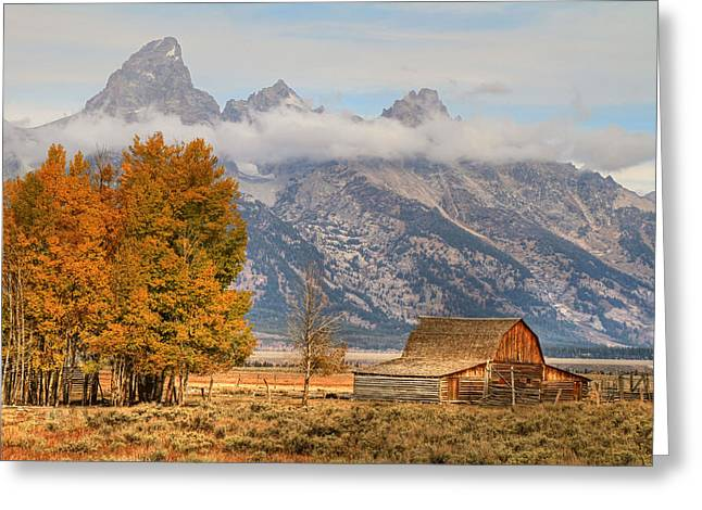 Foilage Greeting Cards - Moulton Barn - Grand Tetons Greeting Card by Donna Kennedy