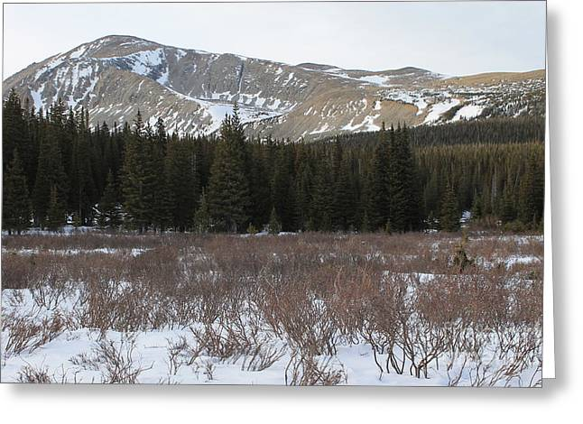 Mount Audubon In Winter Greeting Card by Tonya Hance