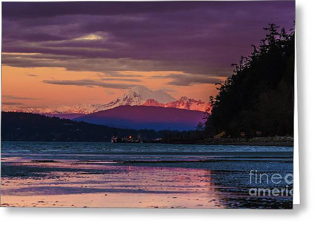 Baker Island Greeting Cards - Mount Baker Tideflats Sunset Alpenglow Reflection Greeting Card by Mike Reid
