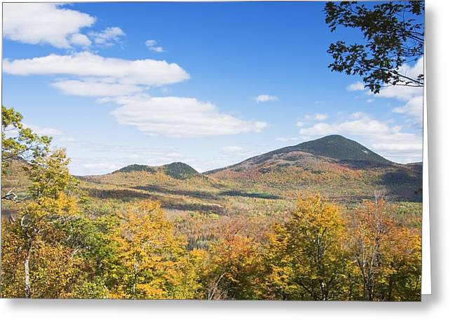 Fall Colors Greeting Cards - Mount Blue State Park In Fall Weld Maine Greeting Card by Keith Webber Jr