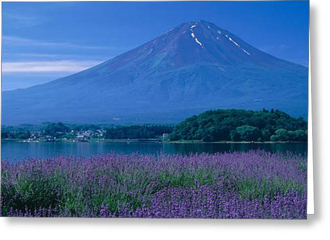 Japan Village Greeting Cards - Mount Fuji Japan Greeting Card by Panoramic Images