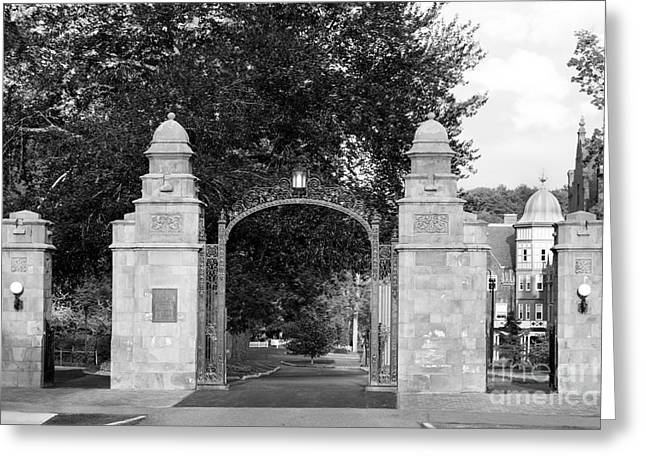 Gates Greeting Cards - Mount Holyoke College Field Gate Greeting Card by University Icons