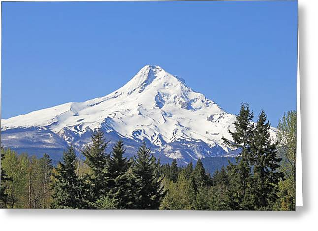 Snow-covered Landscape Greeting Cards - Mount Hood Mountain Oregon Greeting Card by Jennie Marie Schell