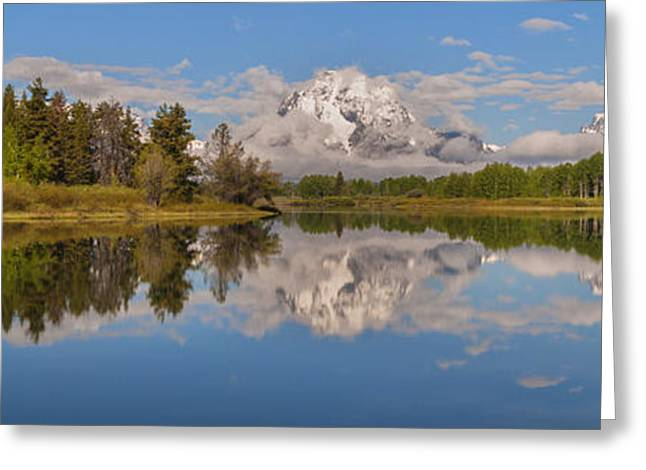 Moran Greeting Cards - Mount Moran On Oxbow Bend Panorama Greeting Card by Brian Harig