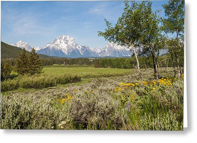 Snow-covered Landscape Photographs Greeting Cards - Mount Moran View Greeting Card by Brian Harig
