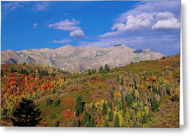 Mount Nebo Scenic Byway Greeting Card by Howie Garber