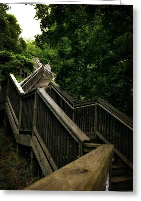 Michelle Greeting Cards - Mount Pisgah Stairs Greeting Card by Michelle Calkins