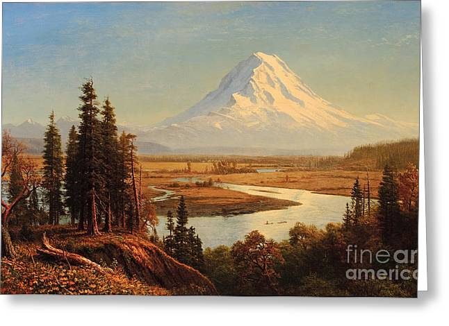 Steer Greeting Cards - Mount Rainier Greeting Card by Albert Bierstadt