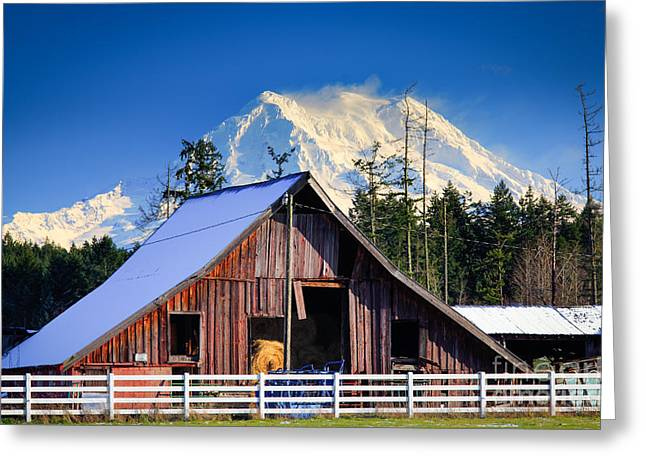 Cascade Mountains Greeting Cards - Mount Rainier and Barn Greeting Card by Inge Johnsson