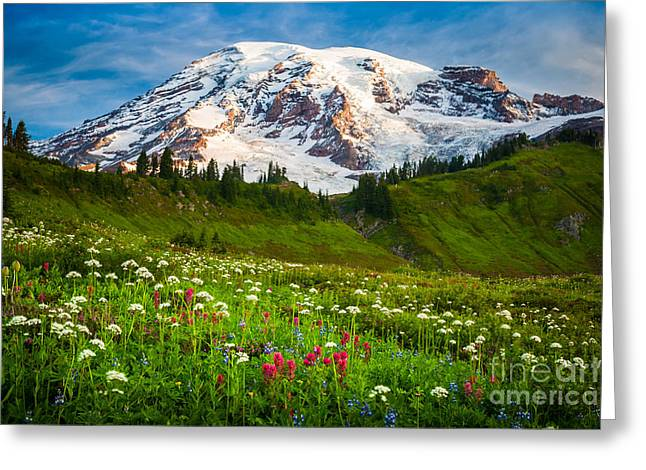 Recreational Park Greeting Cards - Mount Rainier Flower Meadow Greeting Card by Inge Johnsson