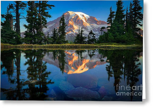 Recreational Park Greeting Cards - Mount Rainier from Tatoosh Range Greeting Card by Inge Johnsson